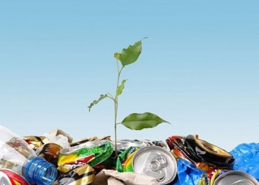הפרדת פסולת - תאגיד מיחזור תמיר