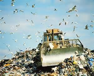 הטמנת פסולת  - תמיר תאגיד מחזור בישראל